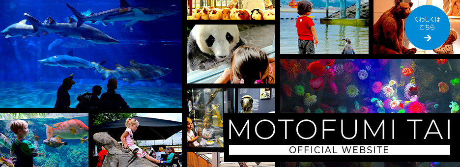 MOTOFUMI TAI OFFICIAL SITE