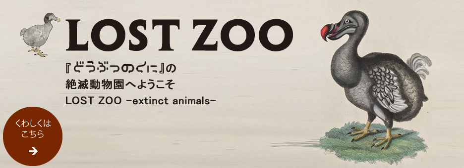 LOST ZOO