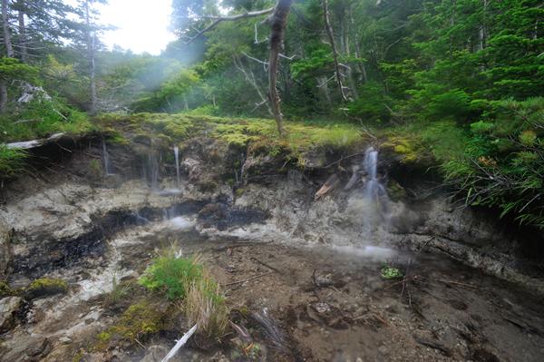 苔の水路の終点、湖へ注ぐ流れ。