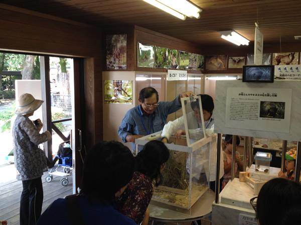 好評だった9月に行ったカヤネズミの特別ガイド。久住牧野の博物館の増田先生と石若先生の豪華特別案内人にカヤネズミについてのお話をしていただきました。