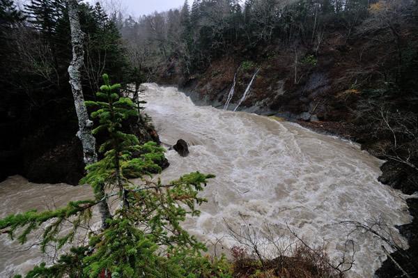 降り注ぐ大きな雨粒を集める濁流。