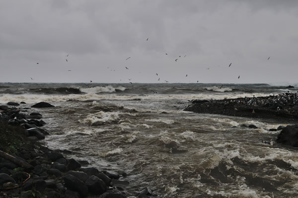 何もかもが海へ呑まれていく。