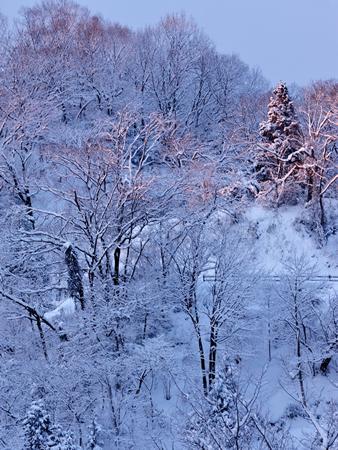 雪山で晴れた朝はすがすがしく美しい。