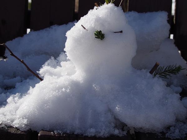 常連の子と作った雪だるま