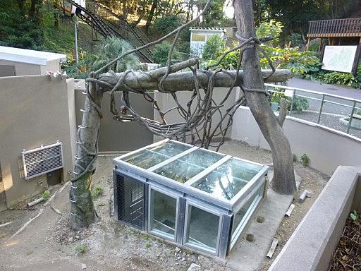 なんかガラスに覆われた施設があります。