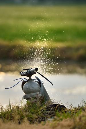 勢いよく水田に水が流されていく光景は我々の生活の営みでもあり自然界の営みでもあり、見ていて気持ちがいい。この水によってすべての命が生かされているのだから。