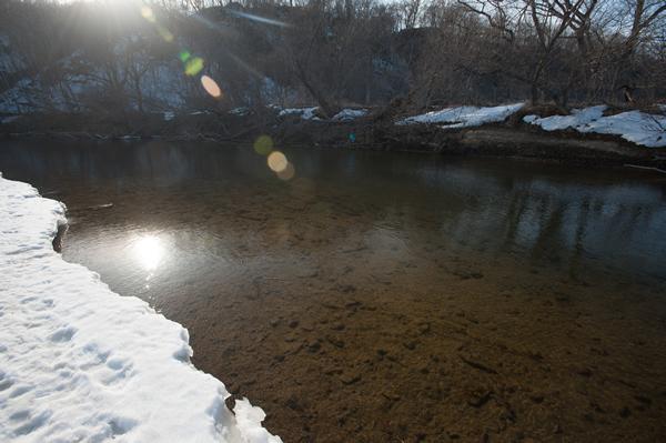 暖かな陽が、水中に春を届ける。