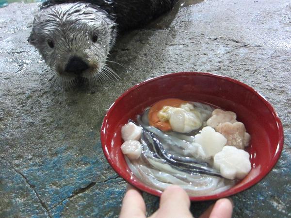 イカで麺を、魚をかまぼこに見立てて飾り切りした作った年越しそば